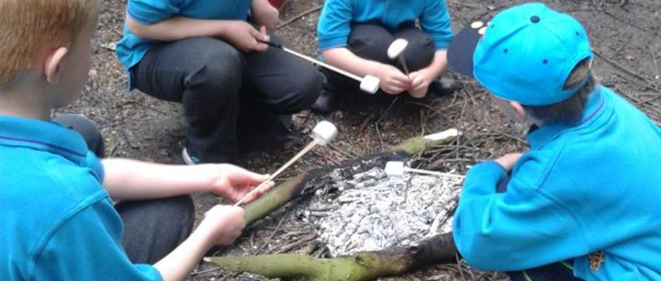Cooking Marshmallows