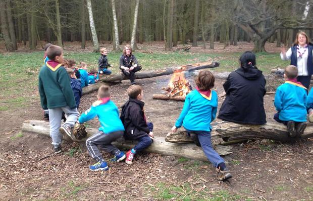 Beavers at the Campfire
